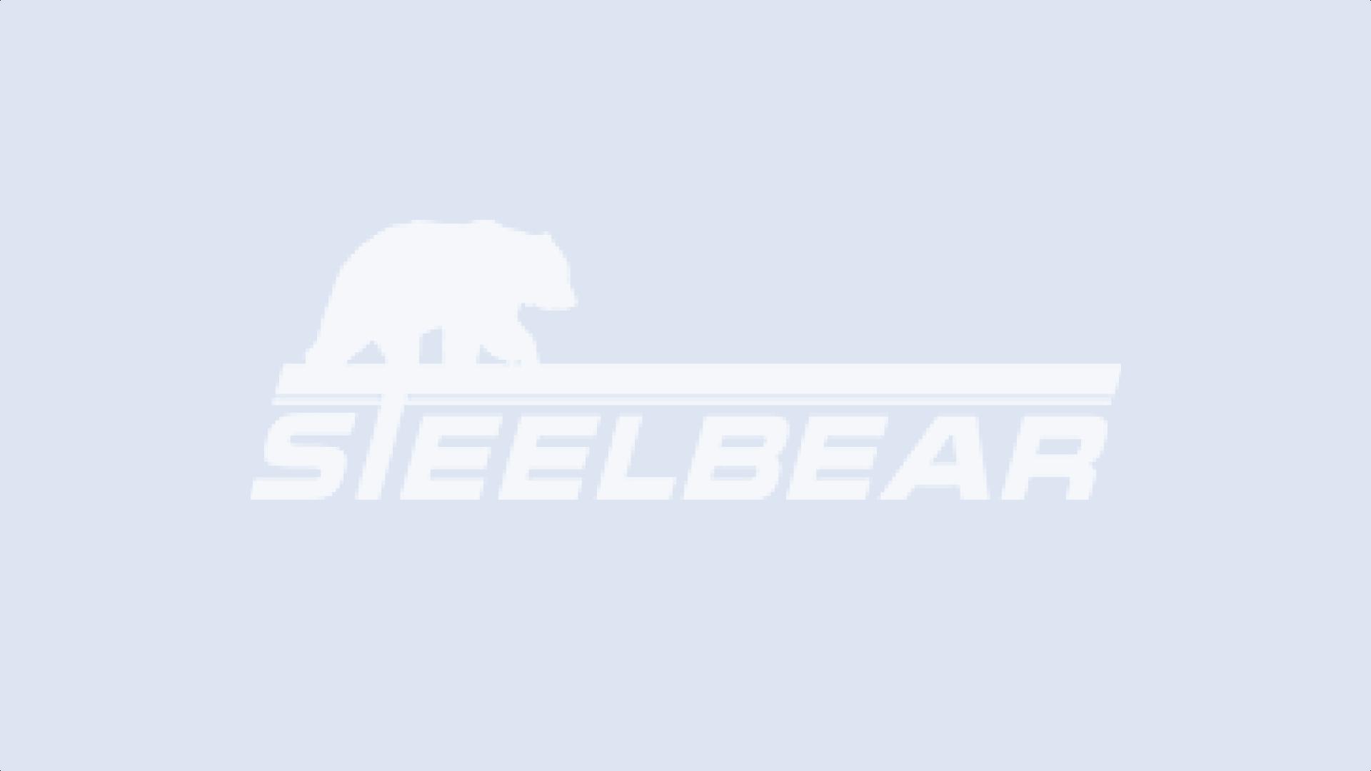 Полуприцепы STEELBEAR на 'АСМАП-2008'